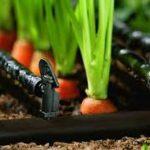 عرضه وخرید شیلنگهای اب کشاورزی