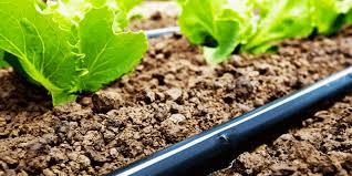 انحصار کننده شیلنگ ابیاری کشاورزی ارزان